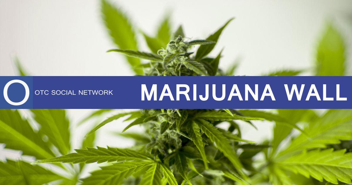 Marijuana-Wall-2