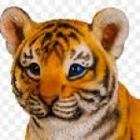 Profile picture of Jobertz